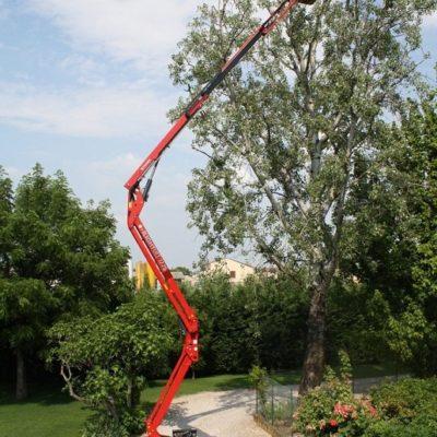 17 meter spinhoogwerker voor het snoeien van een boomtop.