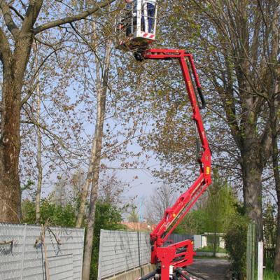 Hinowa GL14.70 in gebruik bij het snoeien van een boom.