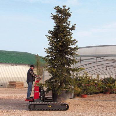 Bomen verplaatsen met een Hinowa TP1600 rupsheftruck van Safety Lift.
